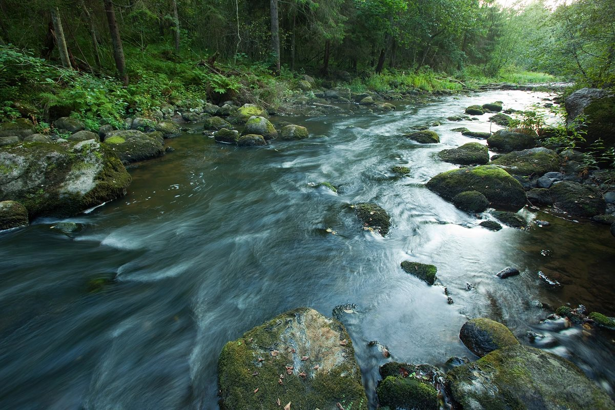 Siuntionjoki
